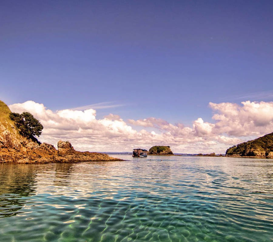 Image of Bay Of Islands